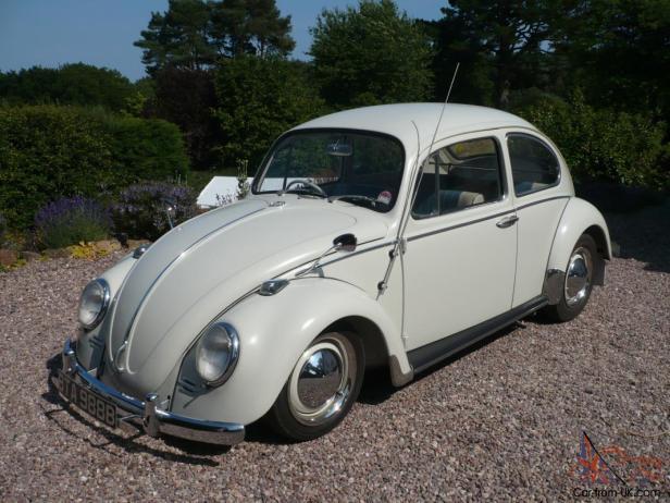 used beetle 2