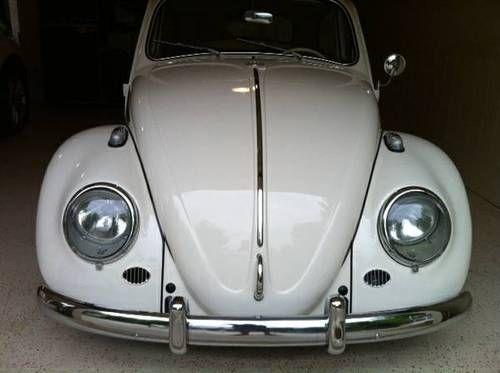 used beetle 3
