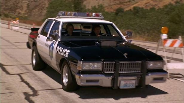 black sheep police car 2